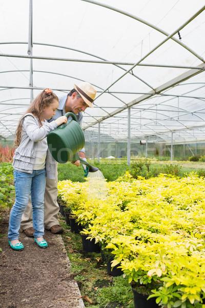 Kislány locsol növények nagyapa üvegház lány Stock fotó © wavebreak_media