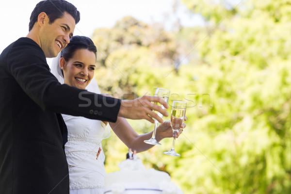 Nowożeńcy szampana flety ciasto parku Zdjęcia stock © wavebreak_media