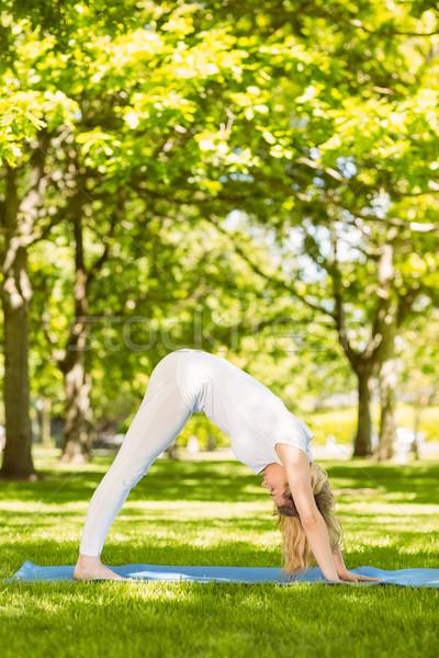 Friedlich Yoga Park Frühling Stock foto © wavebreak_media