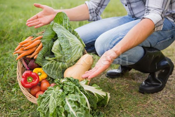 élégant agriculteur panier homme Photo stock © wavebreak_media