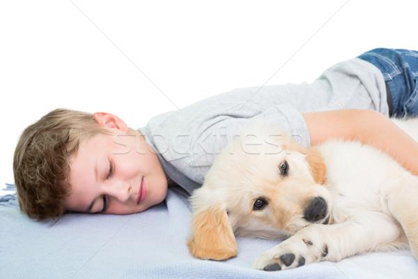Fiú alszik kutya pléd fehér kutyakölyök Stock fotó © wavebreak_media