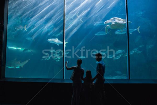 Famiglia felice guardando pesce serbatoio acquario amore Foto d'archivio © wavebreak_media