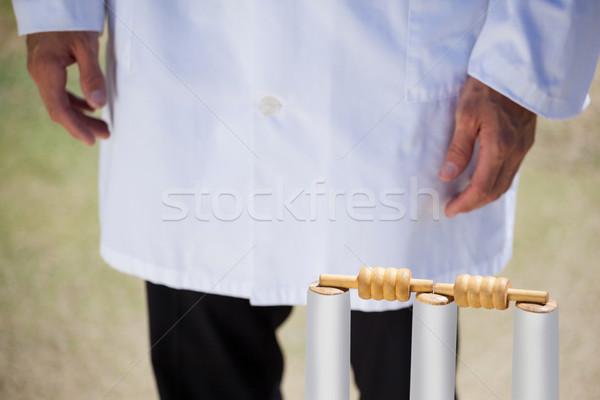 árbitro em pé críquete combinar céu homem Foto stock © wavebreak_media
