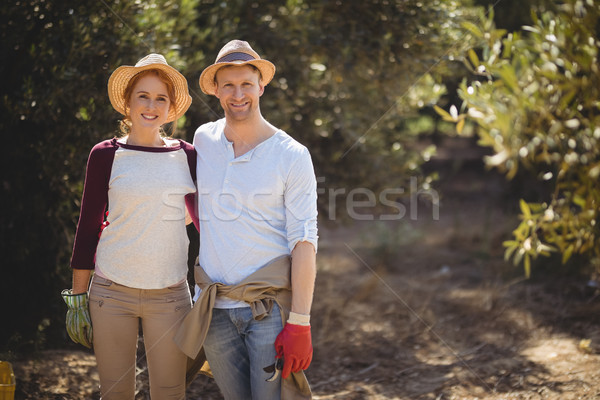 Happy couple standing at olive farm on sunny day Stock photo © wavebreak_media