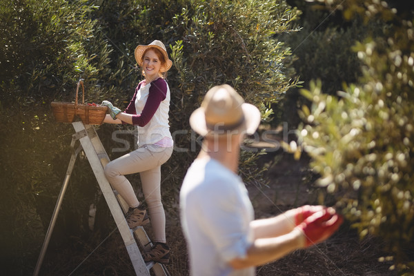 Mulher jovem azeitonas homem primeiro plano fazenda sorridente Foto stock © wavebreak_media