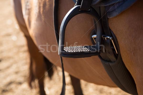 Közelkép nyereg ló ranch sport farm Stock fotó © wavebreak_media