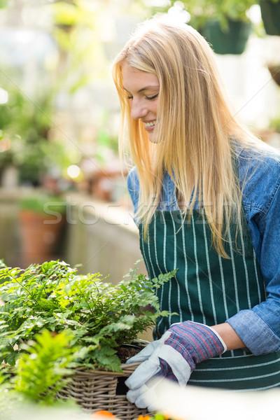女性 植木屋 植物 バスケット ストックフォト © wavebreak_media