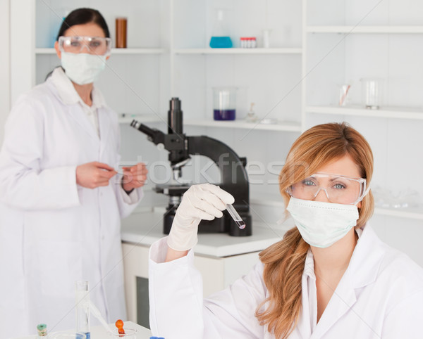 Blond-haired and dark-haired scientists carrying out an experiment in a lab Stock photo © wavebreak_media