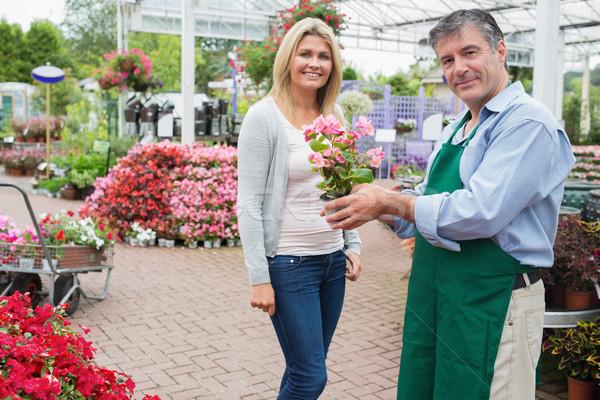 Nő vásárol növény kert központ virág Stock fotó © wavebreak_media