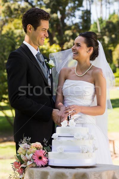 Friss házas pár vág esküvői torta park boldog Stock fotó © wavebreak_media