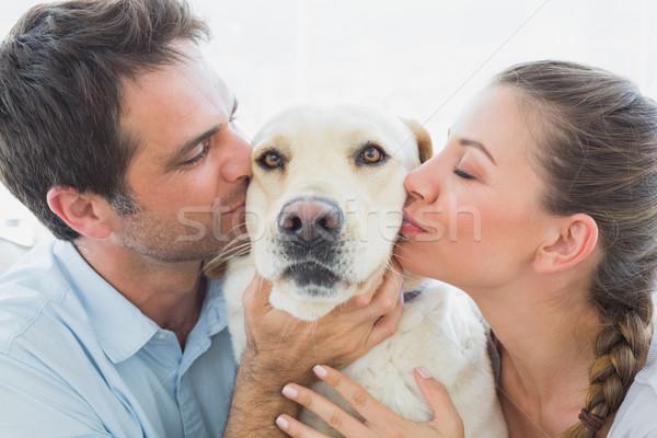 Boldog pár csók citromsárga labrador kanapé Stock fotó © wavebreak_media