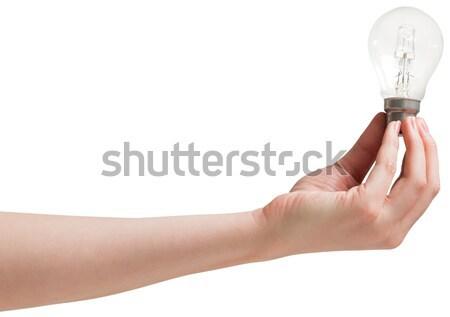 Hand gloeilamp witte technologie energie Stockfoto © wavebreak_media