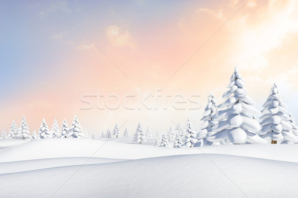 Snowy landscape with fir trees Stock photo © wavebreak_media