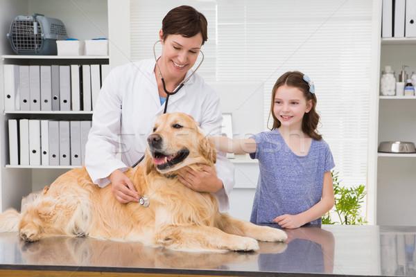 Glimlachend dierenarts onderzoeken hond eigenaar medische Stockfoto © wavebreak_media