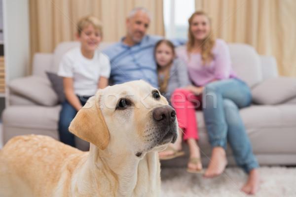 Szülők gyerekek kanapé labrador otthon nappali Stock fotó © wavebreak_media