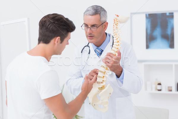 Doktor anatomik omurga hasta tıbbi Stok fotoğraf © wavebreak_media