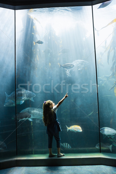 Petite fille regarder poissons réservoir aquarium enfant Photo stock © wavebreak_media