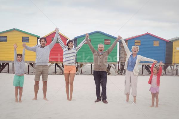Portré derűs család kéz a kézben tengerpart áll Stock fotó © wavebreak_media