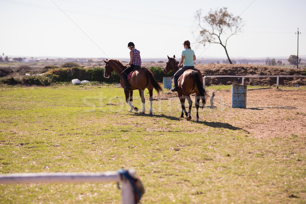 Rear view of female friends horseback riding Stock photo © wavebreak_media
