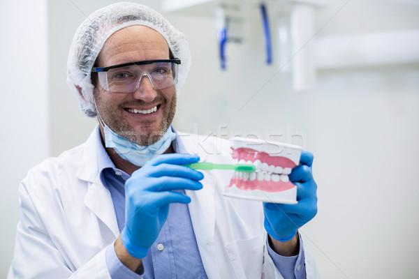 стоматолога рот модель зубов щетка Сток-фото © wavebreak_media