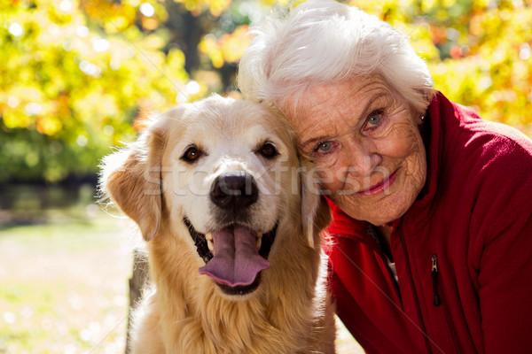 Portret posiedzenia psa parku drzewo Zdjęcia stock © wavebreak_media