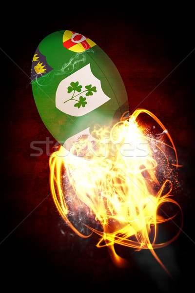 Composite image of ireland rugby ball Stock photo © wavebreak_media