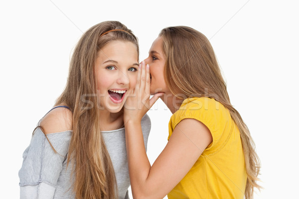 Blonde student whispering to her friend against white background Stock photo © wavebreak_media