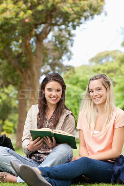 Cute teenagers sitting while studying with a textbook in a park Stock photo © wavebreak_media