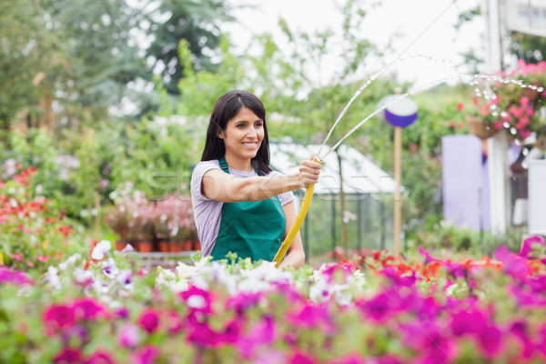 Employee watering plants with hose in garden center Stock photo © wavebreak_media