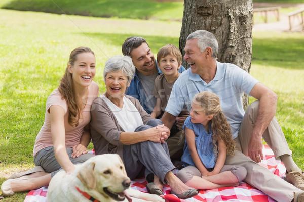 Família grande animal de estimação cão parque retrato sessão Foto stock © wavebreak_media