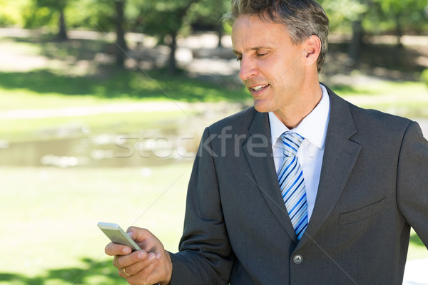 üzletember sms üzenetküldés mobiltelefon érett park üzletemberek Stock fotó © wavebreak_media