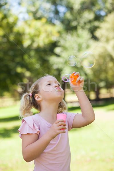 Meisje zeepbellen park cute jong meisje Stockfoto © wavebreak_media