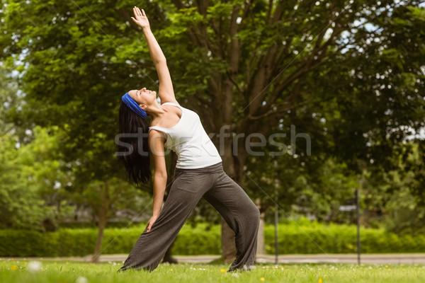 Peaceful brunette doing yoga in the park Stock photo © wavebreak_media