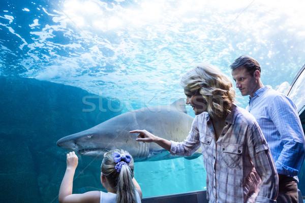 Aile işaret köpekbalığı tank akvaryum kız Stok fotoğraf © wavebreak_media