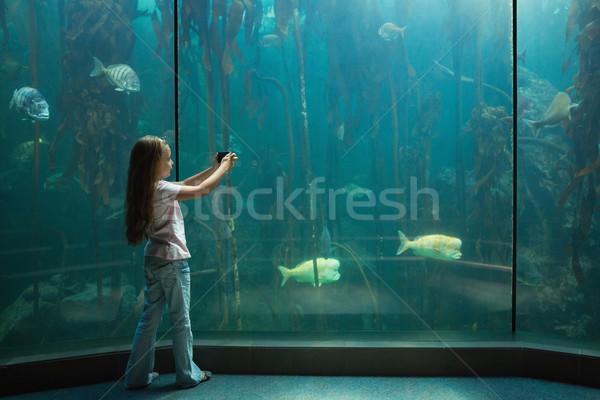 Kislány néz hal tank akvárium gyermek Stock fotó © wavebreak_media
