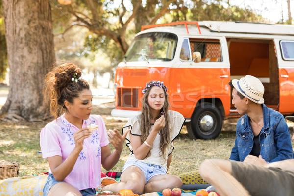 Amici alimentare picnic seduta campo Foto d'archivio © wavebreak_media