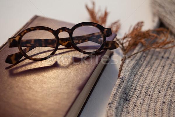 Gyapjú ruha napló szemüveg fehér természet Stock fotó © wavebreak_media