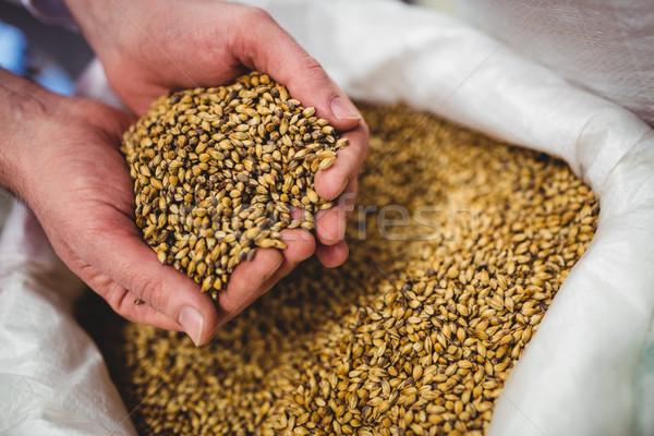 Közelkép sörfőzde gyártó tart árpa zsák Stock fotó © wavebreak_media