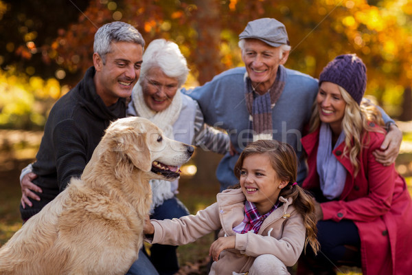 Derűs család park kutya lány fa Stock fotó © wavebreak_media