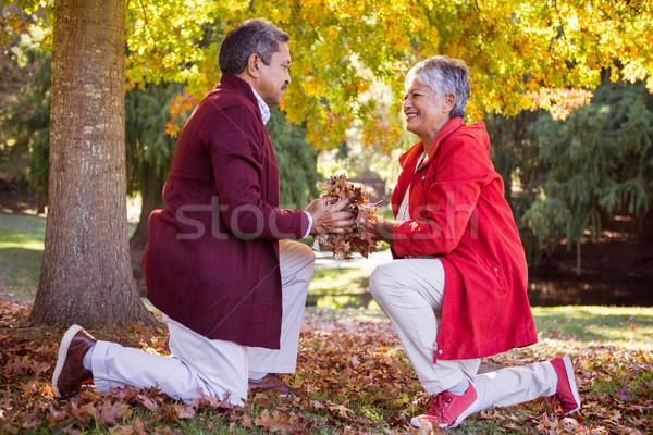 érett pár tart őszi levelek térdel oldalnézet Stock fotó © wavebreak_media