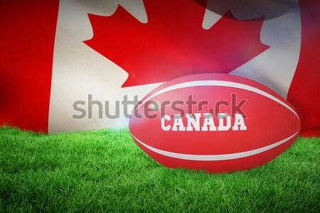 Witte leder voetbal gras Stockfoto © wavebreak_media