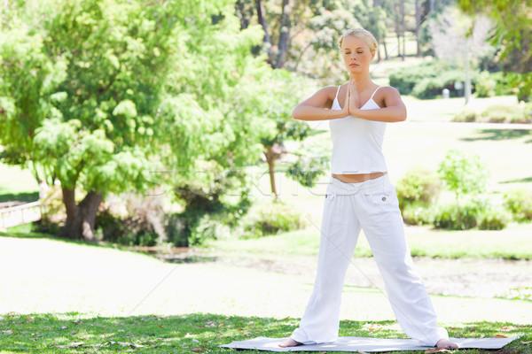 Stok fotoğraf: Genç · kadın · yoga · park · spor · güzellik · yaz