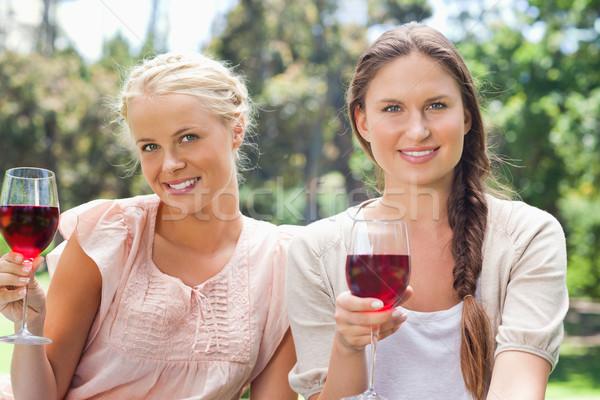 Stock fotó: Mosolyog · női · barátok · vörösbor · park · szépség
