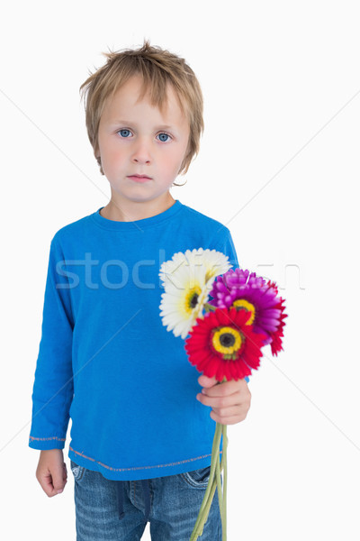 Portrait of cute young boy holding out flowers Stock photo © wavebreak_media