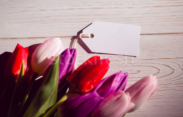 Bunch of tulips and white card Stock photo © wavebreak_media