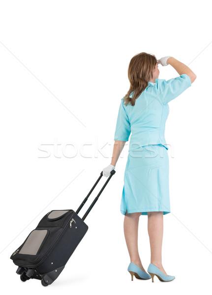 スチュワーデス 青 ユニフォーム 袋 背面図 白 ストックフォト © wavebreak_media