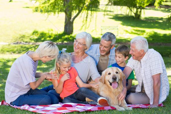 Happy family talking in the park  Stock photo © wavebreak_media