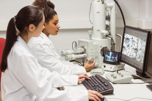 Ciência estudantes olhando microscópico imagem Foto stock © wavebreak_media