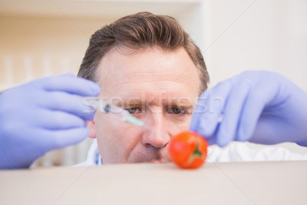 Scientifique tomate laboratoire laboratoire Homme seringue Photo stock © wavebreak_media