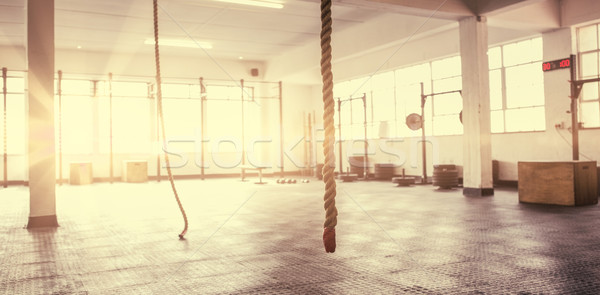 Exercise ropes hanging and equipment Stock photo © wavebreak_media